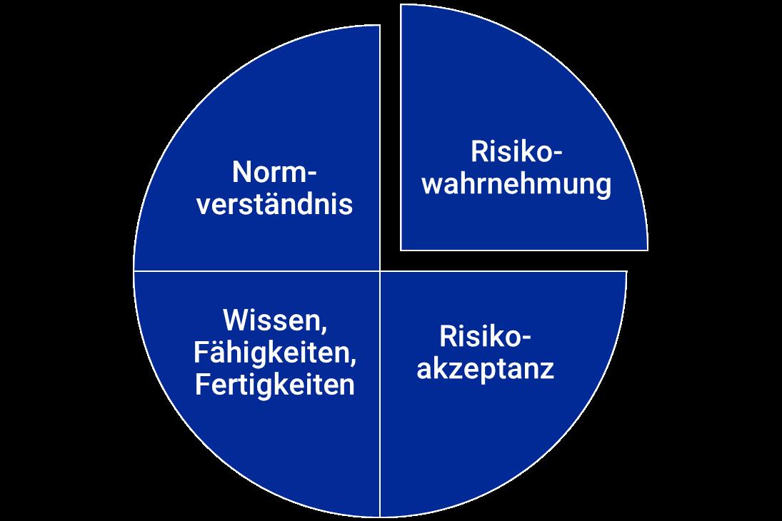 Risikokompetenz und Entscheidungsstärke