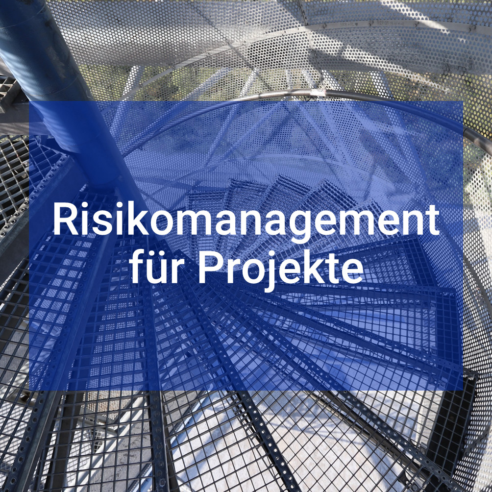 Risikomanagement für Projekte, Link zu weiteren Informationen