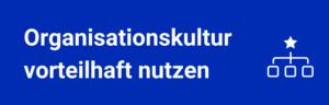 Organisationskultur vorteilhaft nutzen Banner