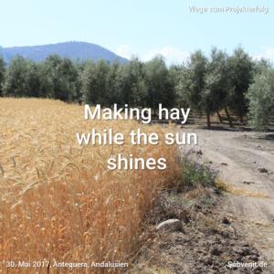 Wege 26 Making hay while the sun shines